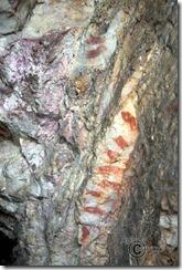 Más pinturas rupestres en la Sierra de Altamira