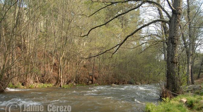 Charco de la Nutria y Cueva Chiquita, historia y naturaleza en el río Ruecas.