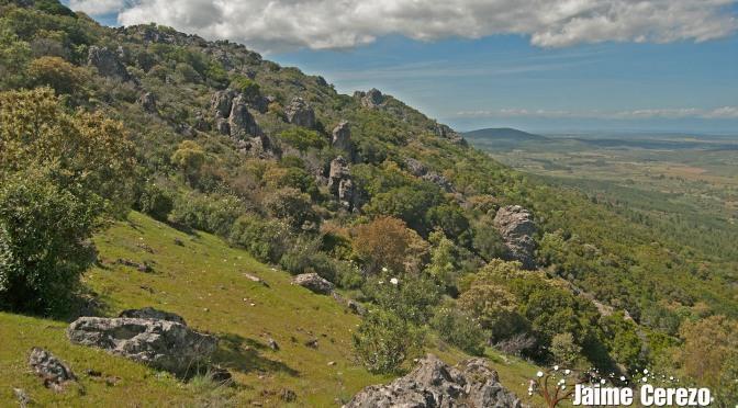 Por las cumbres de la Sierra de Altamira