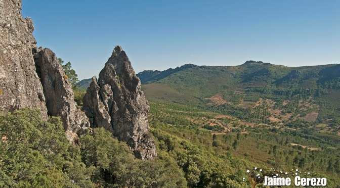 Buscando cuevas en Risco Gordo (Navezuelas)