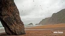 praiaadraga2