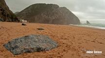 praiaadraga6