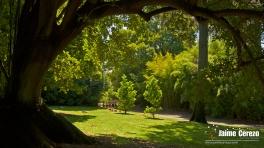 jardintropical26
