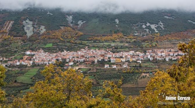 Otoño en el Valle del Almonte (Navezuelas)